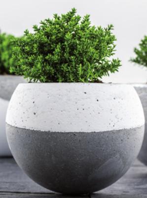 Betonkugel zum bepflanzen aus kreativ beton prell bastelblog for Bastelideen gartendekoration
